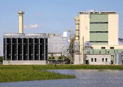 Szakolyi bioerőmű